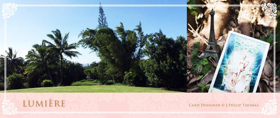 光に照らされた自然とカードの写真